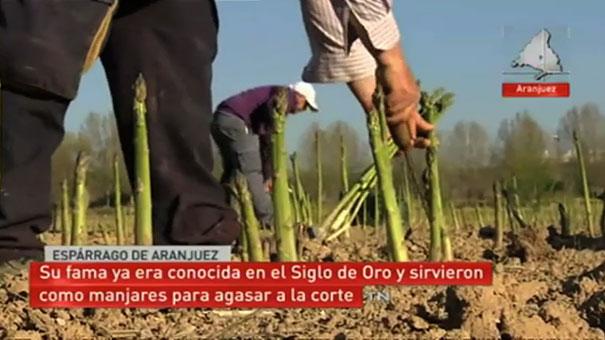 Visita de Telemadrid a la huerta de Aranjuez