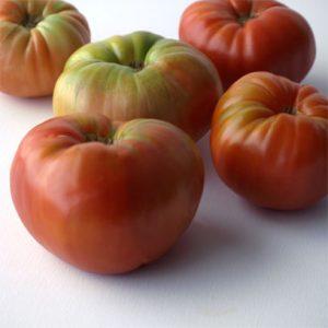 tomate gordo de patones