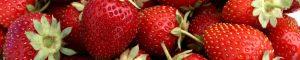fresa de aranjuez