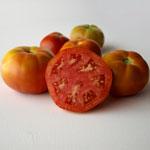 tomate moruno