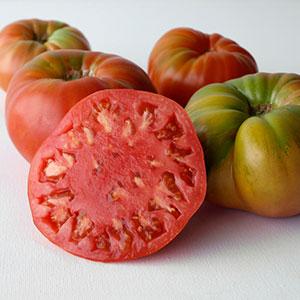 Tomate Gordo